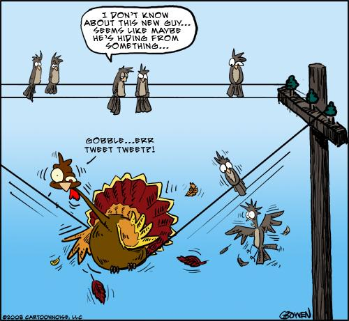 I don't know about this new guy... seems like maybe he's hiding from something gobble ...err tweet tweet?!