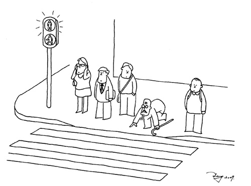 Line Drawing Of Zebra Crossing : Cross road by ttt nature cartoon toonpool