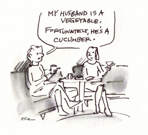 Husband Wife Cartoon Jokes
