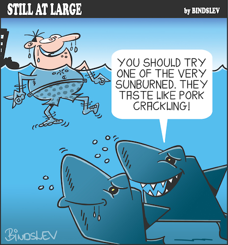 Cartoon: Still at large 95 (medium) by bindslev tagged shark,sharks,attack,attacks,fish,pork,crackling,sunburn,water,sea,bather,swimmer,swimming,beach,bondi,hungry,ditty,eat,eating,lunch,dinner,snack,snacks,tourist,tourists,sunburned,food,chain,chains,predator,predators,prey,preys,shark,sharks,attack,attacks,fish,pork,crackling,sunburn,water,sea,bather,swimmer,swimming,beach,bondi,hungry,ditty,eat,eating,lunch,dinner,snack,snacks,tourist,tourists,sunburned,food,chain,chains,predator,predators,prey,preys