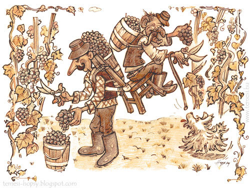 Cartoon: Vintagers (medium) by hopsy tagged vintagers,grape,harvest