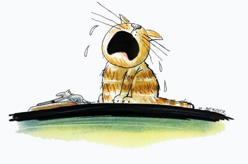 Cartoon: cat (medium) by o-sekoer tagged animals