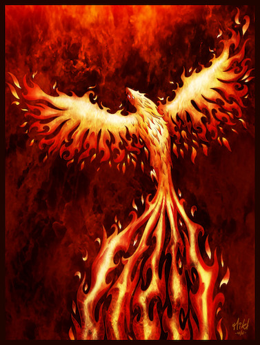 Cartoon: Phoenix (medium) by Mikl tagged michael,mikl,olivier,miklart,illustration,tattoo,phoenix,phenix,fire