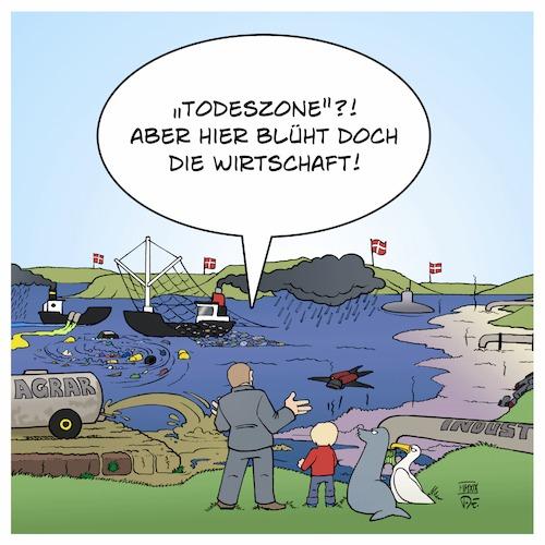 Todeszone Ostsee