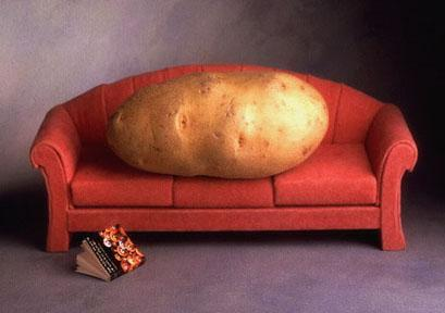Cartoon: Couch Potato (medium) by Karl Toffel tagged toffel