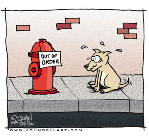 Cartoon: Out of Order (medium) by JohnBellArt tagged dog,sign,out,of,order,fire,hydrant,wc,toilet,crapper,poop,turd,shit,pee