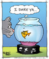 Cartoon: Dare (small) by JohnBellArt tagged cat,fish,fishbowl,dare,conflict,piranha,deadly,killer
