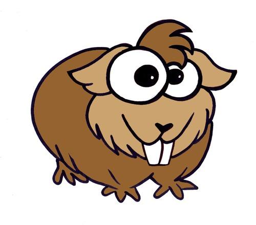 Cuy Peruvian Animal By Devate Nature Cartoon Toonpool