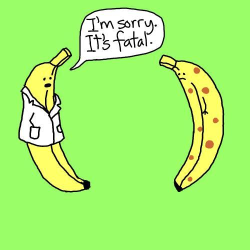 banana funny cartoon -#main