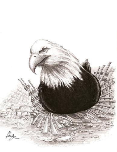 Cartoon: Never Forget! (medium) by menekse cam tagged attack,keepingwarm,debris,usa,eagle,incubation,11,september