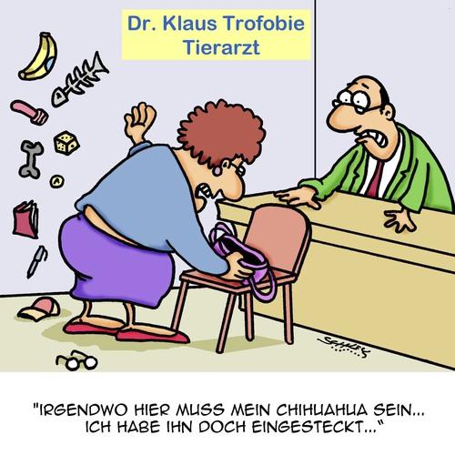 tierarzt spielen