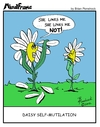 Cartoon: MINDFRAME (small) by Brian Ponshock tagged daisy,flower,heartbreak