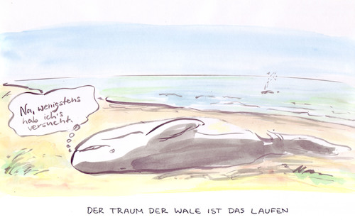 Cartoon: Ever try (medium) by Bernd Zeller tagged traum