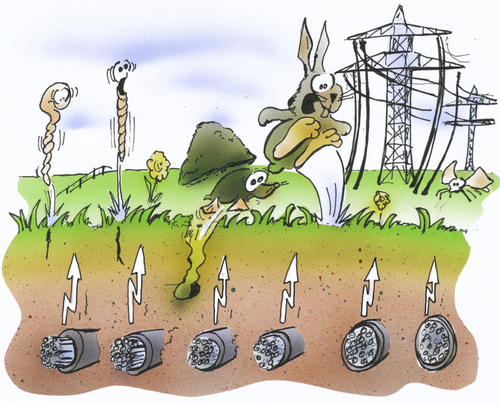 Cartoon: Erdkabel (medium) by HSB-Cartoon tagged strom,energie,stromkabel,energy,elektrizität,volt,natur,umwelt,spannung,würmer,maulwurf,hase,kanninchen,strommast,offshore,nordsee,stromquelle,windrad,karikatur,hsb,auirbrush,strom,energie,stromkabel,elektrizität,natur,umwelt,spannung,würmer,maulwurf,hase,kanninchen,strommast,nordsee,stromquelle,windrad