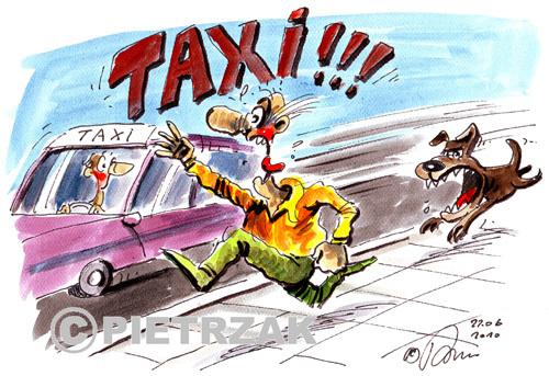 """Résultat de recherche d'images pour """"taxi humoristique"""""""