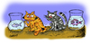 Cartoon: The cats (small) by ismailozmen tagged cat,fish