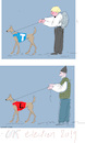 UK election 2019