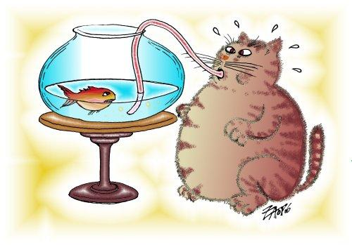 What Happens When Cats Eat Fish