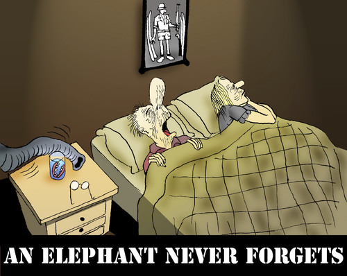 an elephant never forgets by berk olgun media culture cartoon toonpool. Black Bedroom Furniture Sets. Home Design Ideas