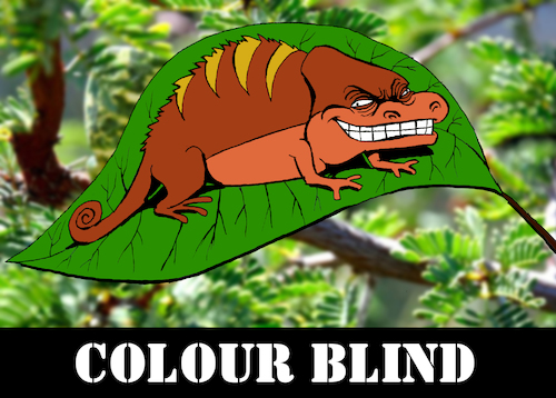 Cartoon: Colour Blind... (medium) by berk-olgun tagged colour,blind
