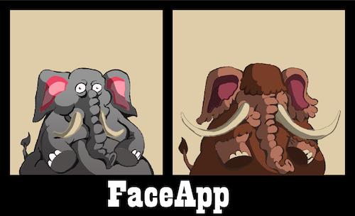 FaceApp    By berk-olgun | Media & Culture Cartoon | TOONPOOL