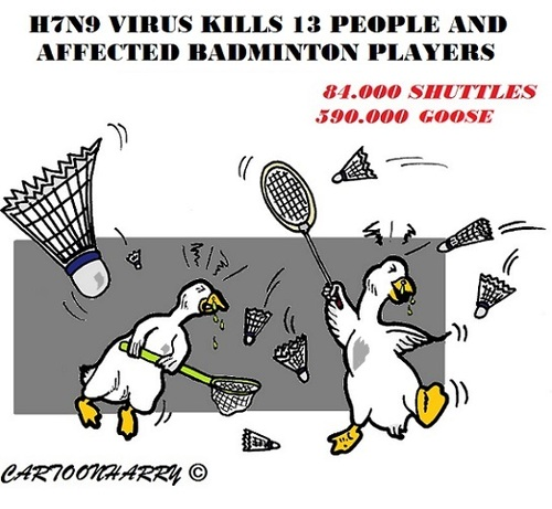 Cartoon: H7N9 (medium) by cartoonharry tagged birdsflu,h7n9,china,badminton,goose,birds,shuttles,cartoons,cartoonists,cartoonharry,dutch,toonpool