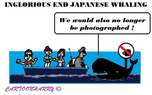 Cartoon: Japanese Whaling End (medium) by cartoonharry tagged japan,whaling,end,photos
