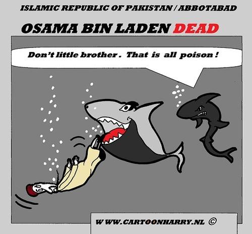 usama in laden cartoons. Cartoon: OSAMA BIN LADEN DEAD