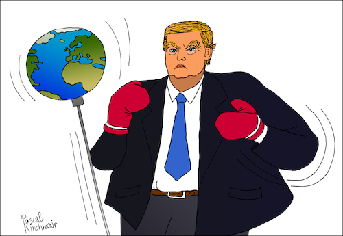 Trumps punching ball