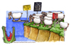 Cartoon: Pecore in coda (small) by Niessen tagged pecore,numero,coccodrillo,salto,coda,sheep,number,crocodile,jump,queue,schaf,anzahl,krokodil,springen