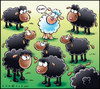 Cartoon: Black sheep (small) by Carayboo tagged black,sheep,lamb,mouton,noir,white,animal