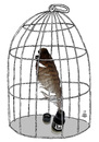 Cartoon: cage (small) by drljevicdarko tagged cage
