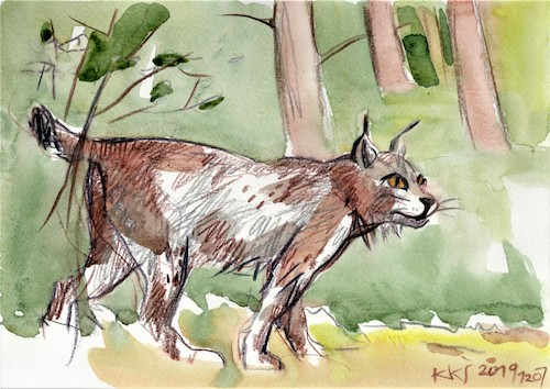 Cartoon: Sketch. At the Forest Museum (medium) by Kestutis tagged sketch,forest,museum,kestutis,lithuania,wald