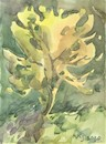 Cartoon: Summer etudes. Yellow tree (small) by Kestutis tagged summer etudes yellow tree sketch kestutis lithuania watercolor