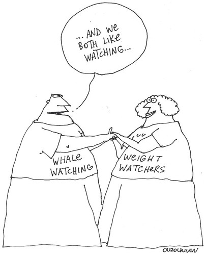 Cartoon: love and stuff (medium) by ouzounian tagged diets,weightwatching,fat