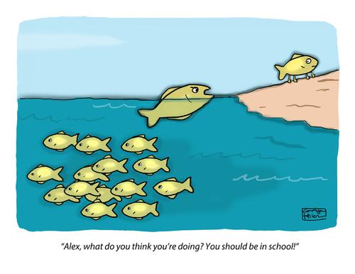 Evolution of conformity in america