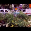 Cartoon: MH - Urban Jungle III (small) by MoArt Rotterdam tagged rotterdam,bigcity,grotestad,urban,urbanjungle,stad,stadsjungle,auto,car,streetview,straatgezicht