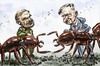 Cartoon: Hölldobler and Wilson (small) by Bob Row tagged science ants superorganism entomology sociobiology