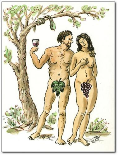 Cartoon: wine (medium) by penapai tagged adam,eve,,adam,eva,paradies,schlange,frucht,verführung,locken,weintraube,wein,sünde,religion,trinken,alkohol