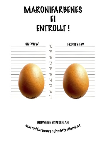 Cartoon: ei entrollt (medium) by schmidibus tagged ei,huhn,maronifarben,henne,freiland,freilaufend,hahn