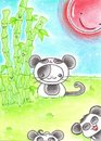 Cartoon: Kitty or Panda II (small) by Metalbride tagged traiding,card,katze,widget