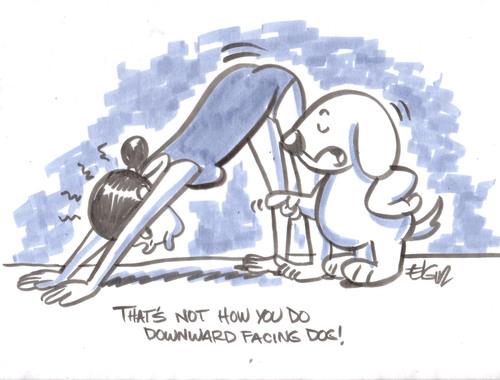 """""""Asi no es como se hace perro mirando hacia abajo"""""""
