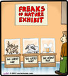 Cartoon: Freaks of nature (small) by cartertoons tagged freak,nature,beer,museum,exhibit