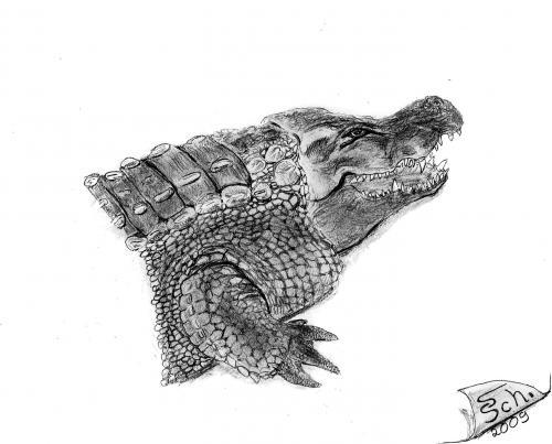 The Florida alligator ( May 21, 1938 )