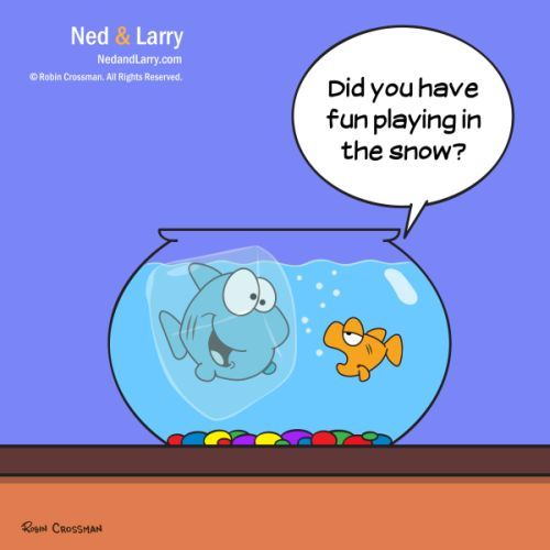 Cartoon: Ned and Larry - Snow Day (medium) by NedandLarryComics tagged cartoon,goldfish,funny,snow,winter,comics,comic,fishbowl