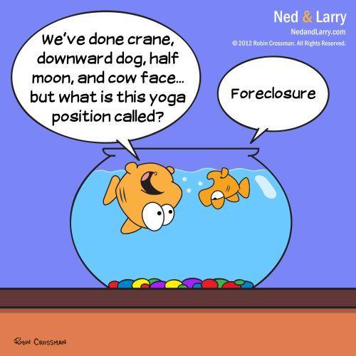 Ned And Larry Yoga By Nedandlarrycomics Media Culture Cartoon Toonpool