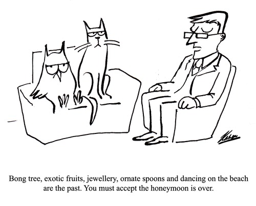 Cartoon: Spooning (medium) by pinkhalf tagged lear,cat,owl,relationship,poem,therapy,woman,man