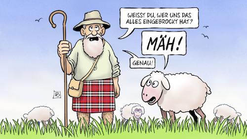 Schaf Karikatur
