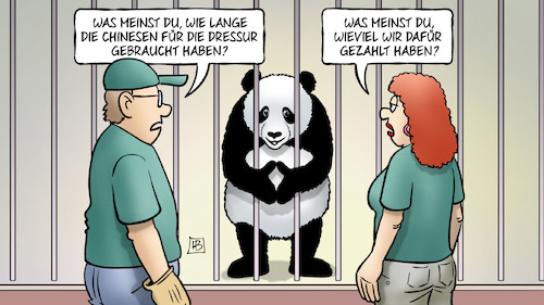 Cartoon: Panda-Staatsakt (medium) by Harm Bengen tagged panda,staatsakt,merkel,xi,deutschland,china,berlin,zoo,chinesen,dressur,geld,harm,bengen,cartoon,karikatur,panda,staatsakt,merkel,xi,deutschland,china,berlin,zoo,chinesen,dressur,geld,harm,bengen,cartoon,karikatur