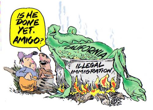 Cartoon: frog (medium) by barbeefish tagged done,yet,